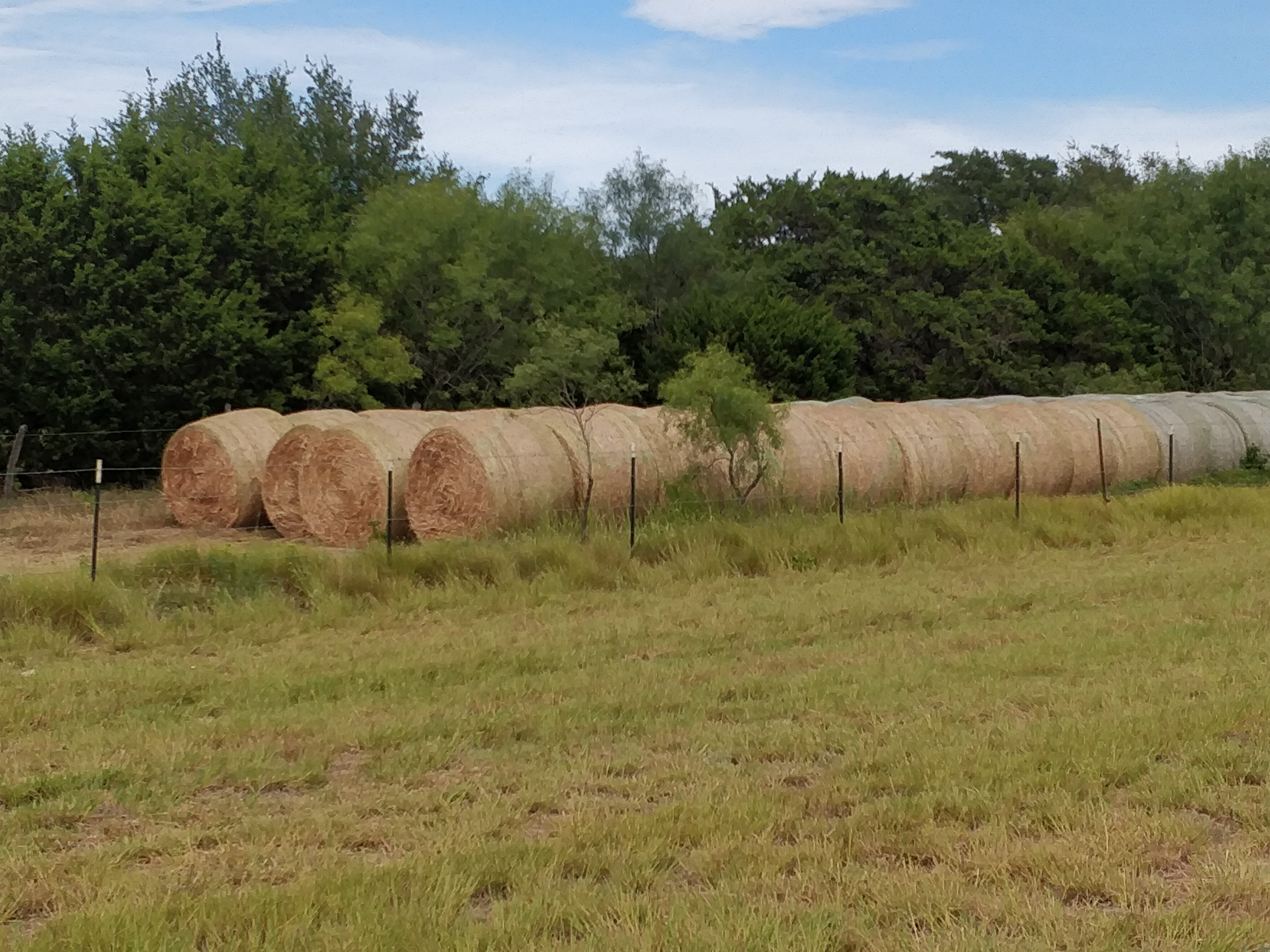 Hay in a side field (view 1)