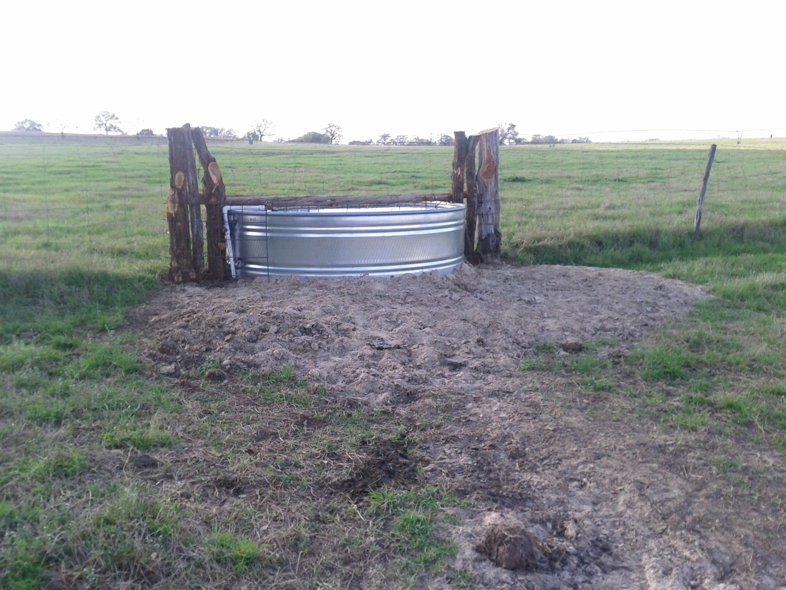 Water trough supplying two pastures
